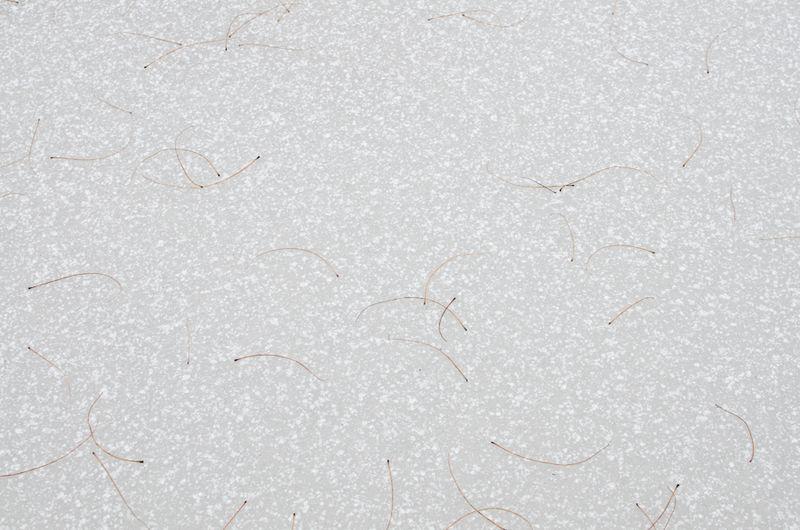 Snow 11-2104-11