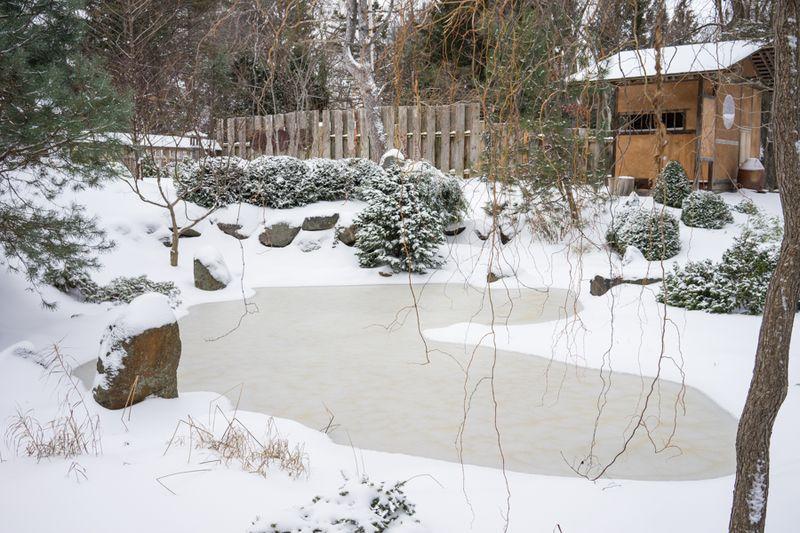 Dec Snow-19