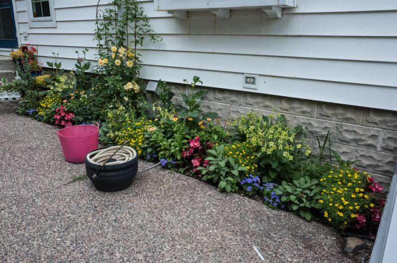 Erin's Garden-1