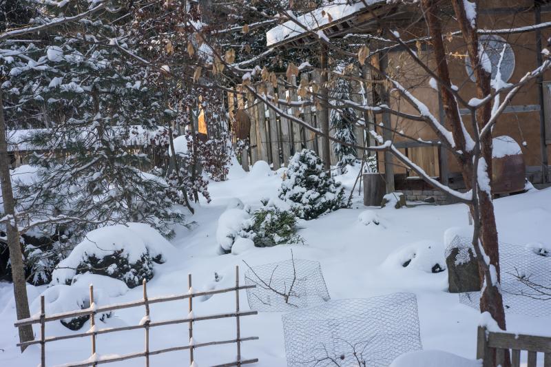 Buddha-snow-2