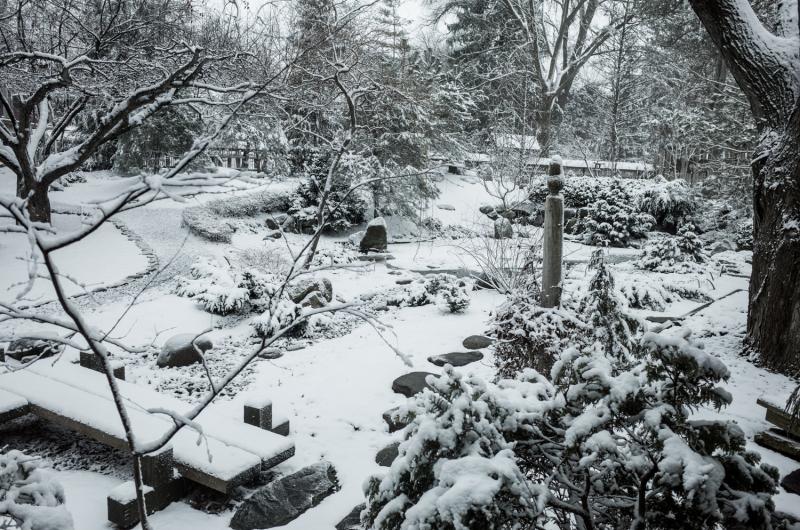Spring Snow Yard-5